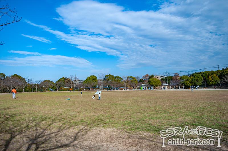 桧原運動公園の芝生の多目的広場