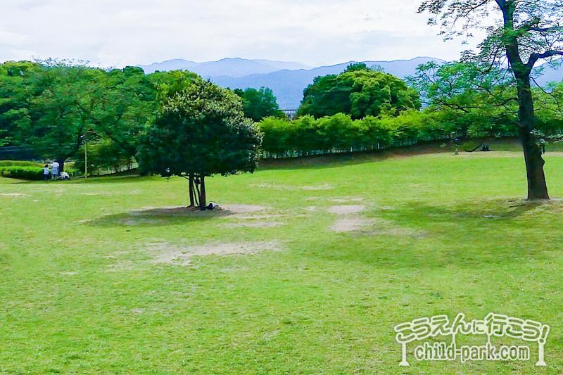 西南杜の湖畔公園の芝生スペース