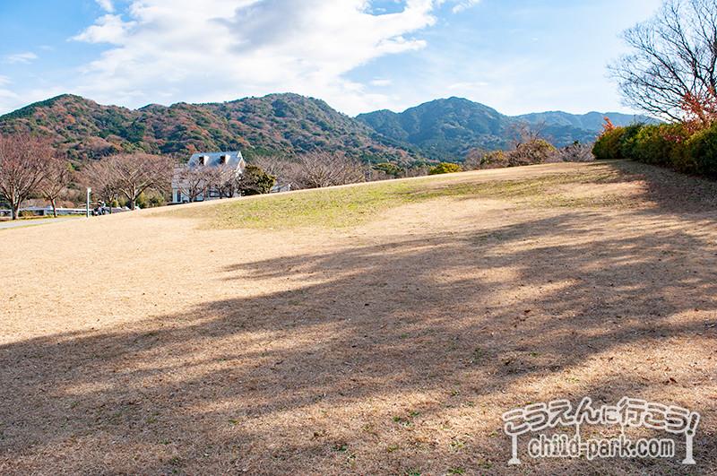 西油山公園の芝生スペース