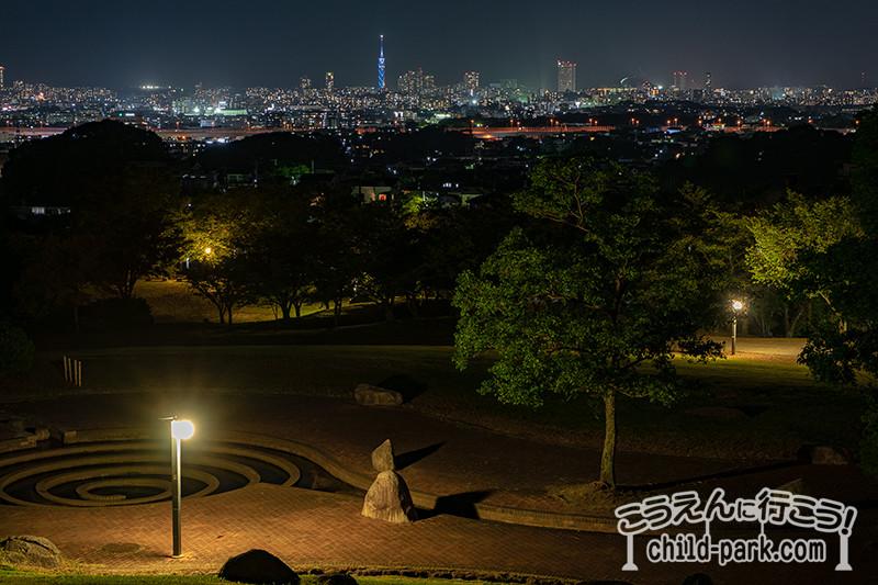 西油山中央公園からの夜景