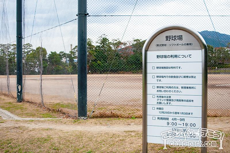 西南杜の湖畔公園  野球場