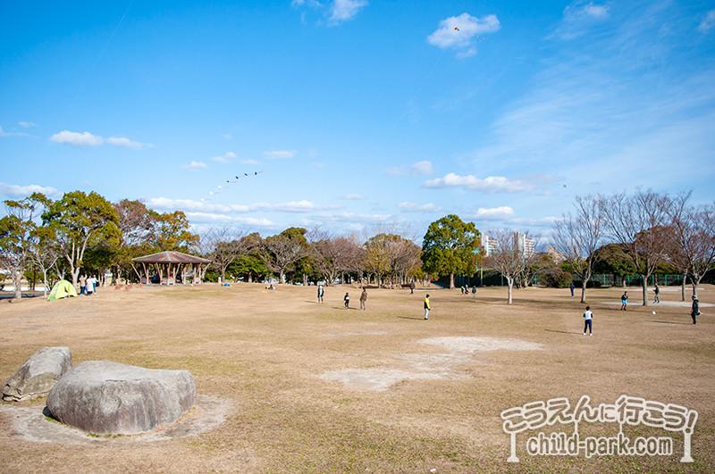 西部運動公園の芝生広場